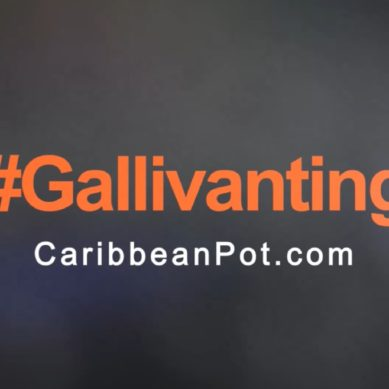 #Gallivanting with CaribbeanPot: Whistler