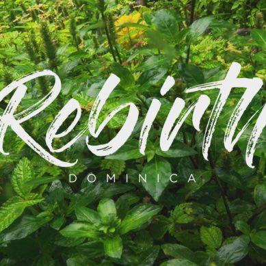 Rebirth: Dominica