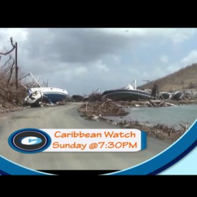Caribbean Watch S1E03