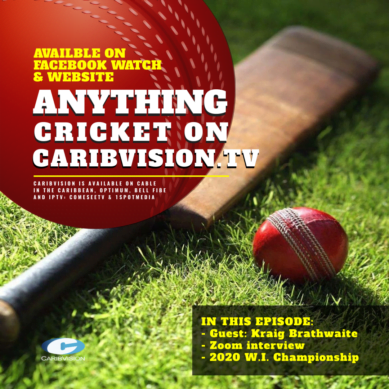 Anything Cricket S2-13
