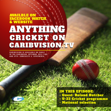 Anything Cricket S2-11