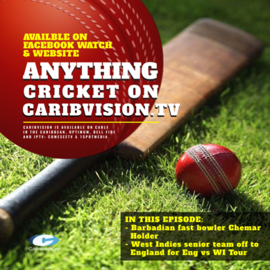 Anything Cricket S2-15
